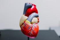 Καρδιολογικά